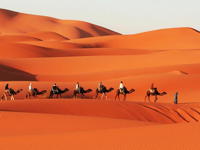 Wadi & Desert Adventure